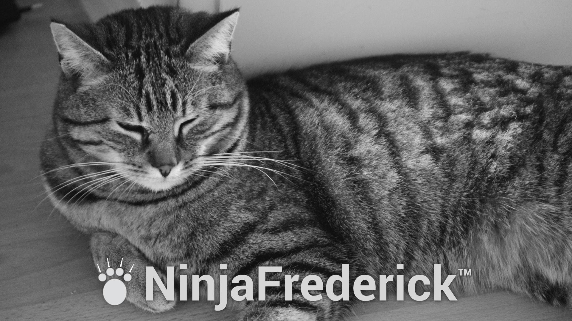 NinjaFrederick